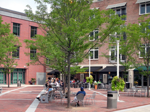 Princeton-Redevelop-Photo-300x225px